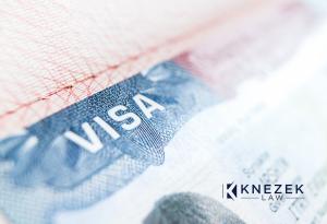 Knezek Law - Immigration Reform